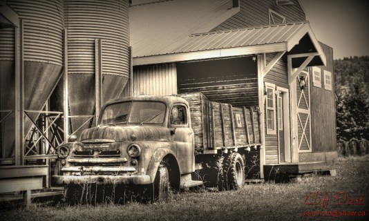An old Fargo farm truck in a farm yard.
