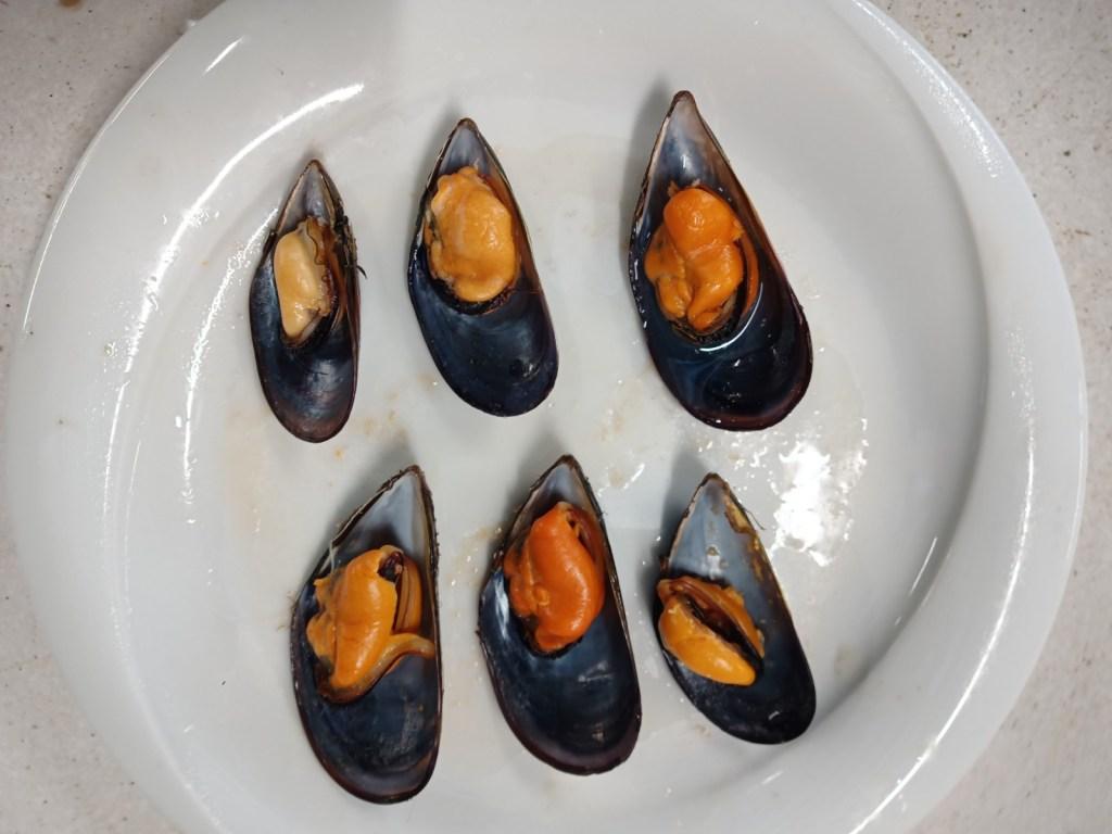 Moules Espagne cuite