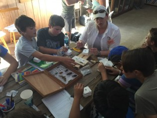 Fisheries and Wildlife PhD student Emily Campbell shows the students how to pin the insects they've caught