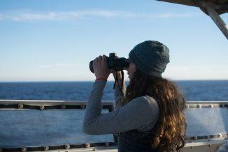Dawn Barlow scans for marine mammals from the flying bridge of NOAA ship Bell M. Shimada. Photo: Jess O'Loughlin.