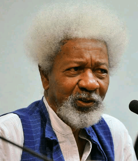 You can't end insecurity by sitting in Aso Rock, Soyinka tells Buhari