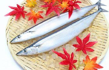 さんま(秋刀魚)の栄養や効果や効能は?健康、美容にすべてよし!
