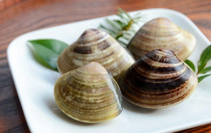 はまぐり(蛤)の栄養や効能は?生活習慣病に効果抜群!美肌にも効果あり!