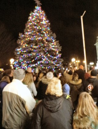 all eyes on oswegos christmas tree