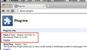 Turn Off the Flash Plugin in Google Chrome