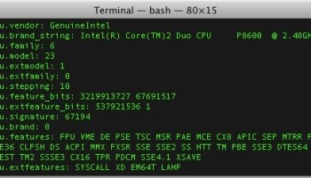 get processor serial number cmd