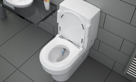 Toileting – a risky business