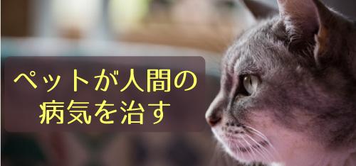 ペットが人間の病気を治す