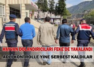 HAYVAN DOLANDIRICILARI FEKE'DE YAKALANDI