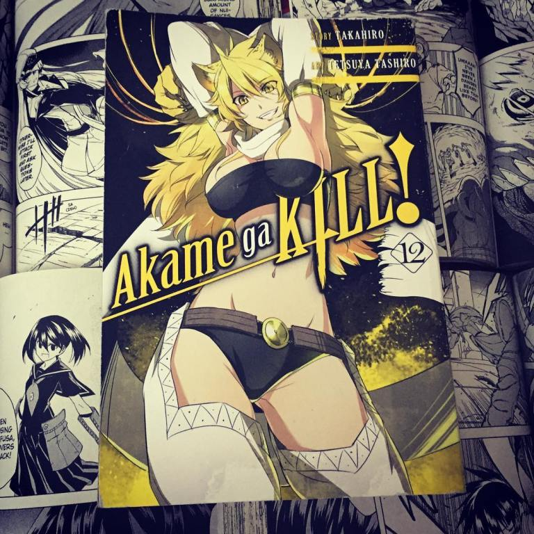 Akame ga Kill Volume 12 Cover