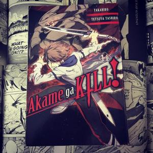 Akame ga Kill Volume 14 Cover