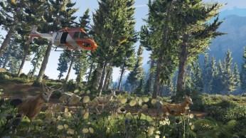 GTA V vue FPS (11)