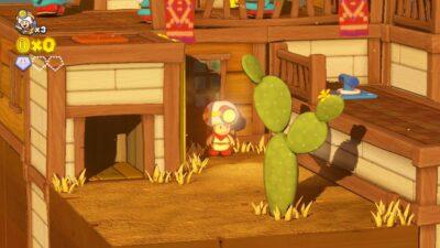 Saviez-vous que ces cactus d'appellent des raquettes ?