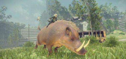 Ouais. Ce cochon a définitivement la classe.