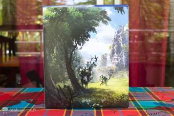 L'édition collector de Horizon Zero Dawn