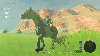 Zelda Breath of The Wild (11)