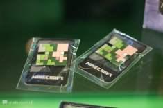 Pin's Minecraft