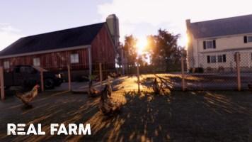 Real Farm_Screenshot_Chicken_Watermarked-min