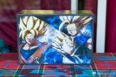 Collector Dragon Ball fighterZ_020218_13