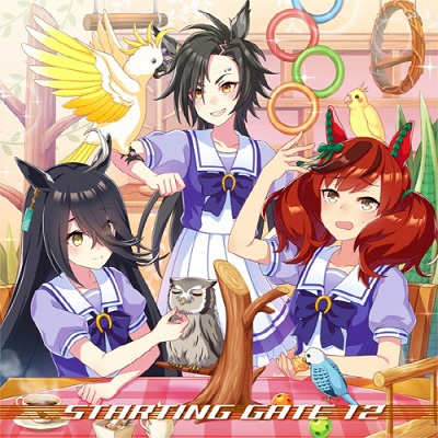 Uma Musume Pretty Derby STARTING GATE 12