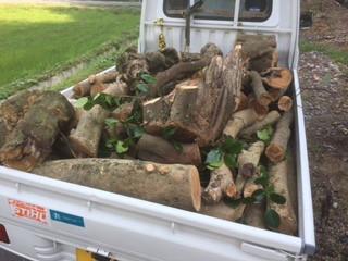 ワンダーデバイス 木材回収