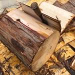 針葉樹の皮をめくってひたすら割る