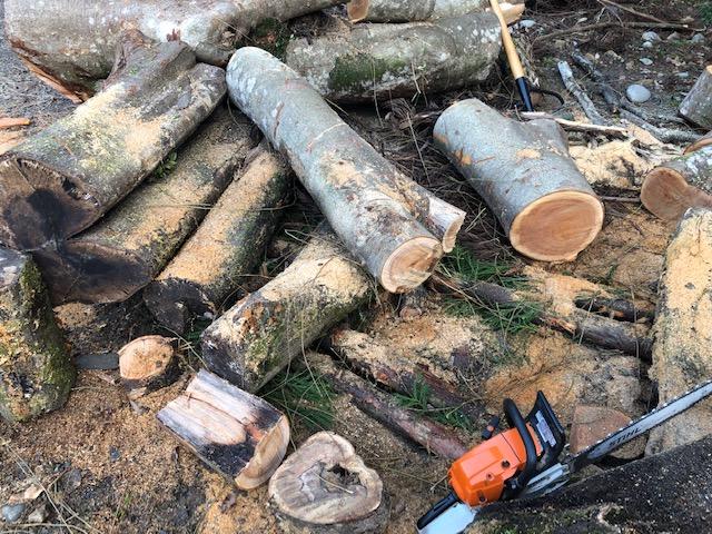 正確には、予約されていた雑木薪がはけて、残り約半立米になったため、これだけで欲しいって言う人が現れない限り、売れない状態になっています。  こんなかんじ。
