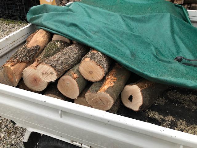 このあとに、まっすぐの原木を切る前に、つけてみた。