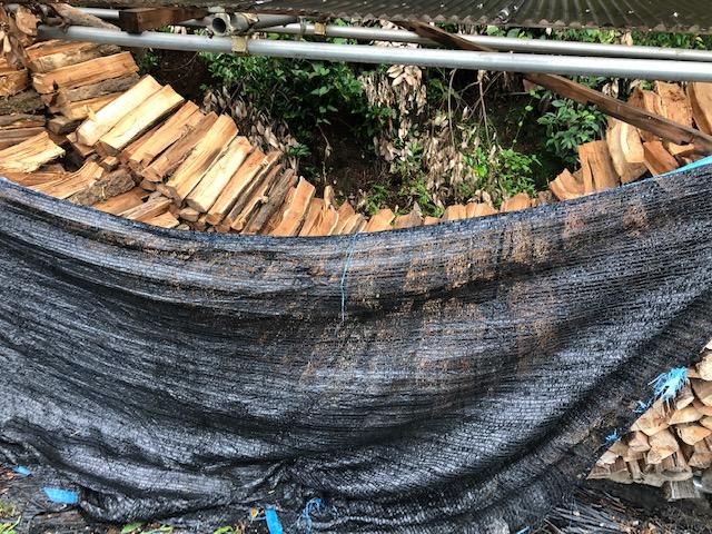 【梅雨の雨対策】山の薪棚の薪を移動した