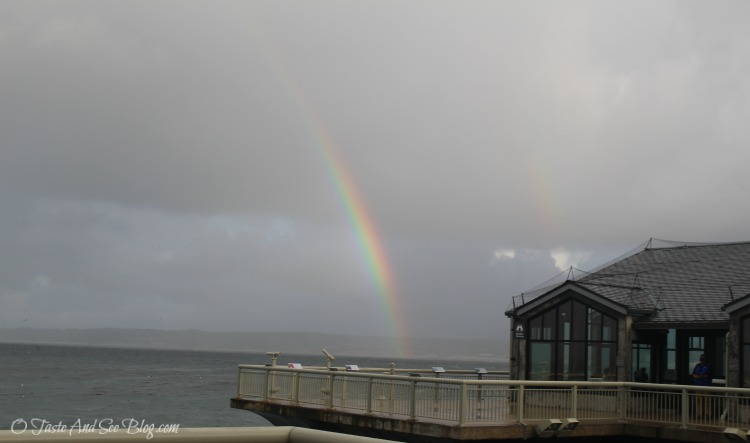 Monterey Bay Aquarium #hosted