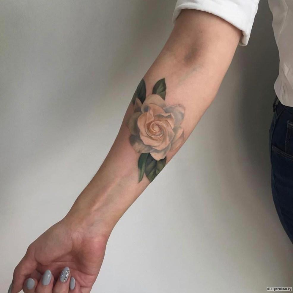 нежная белая роза тату на предплечье у девушки добавлено иван