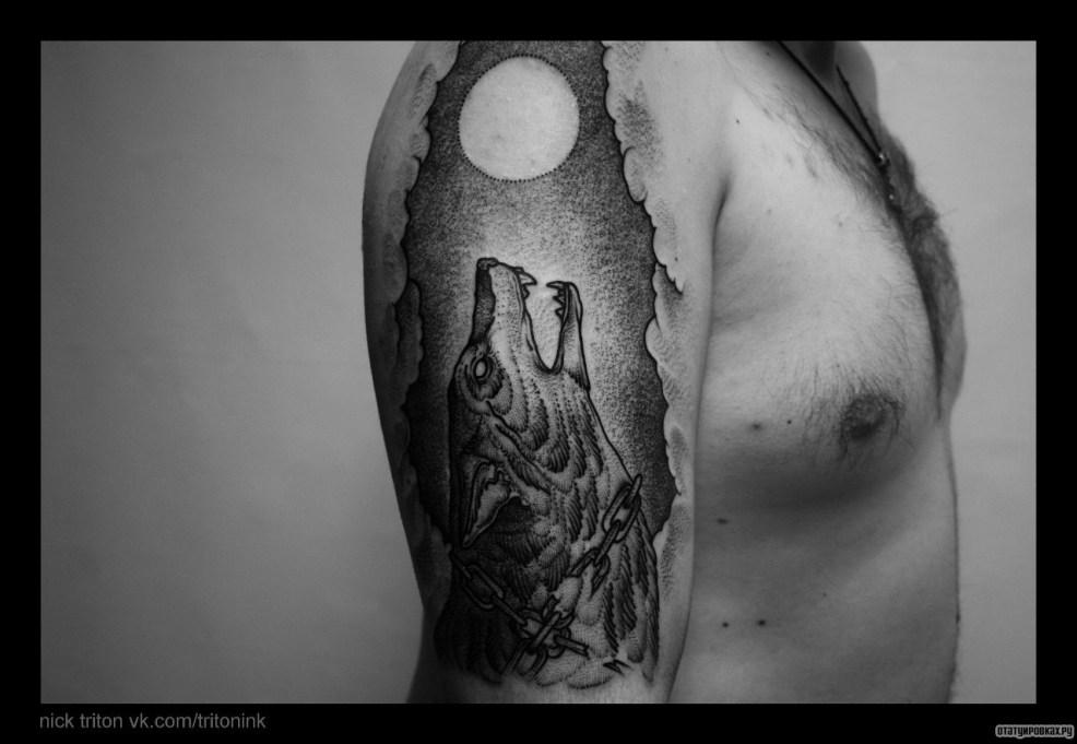 фото тату волк воет на луну
