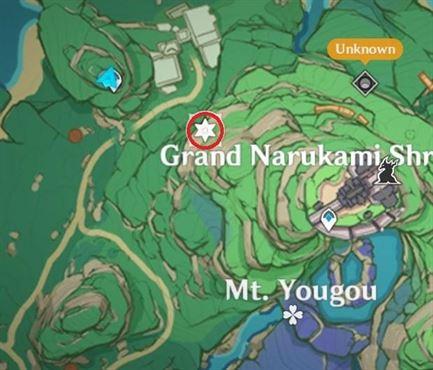 10 Electroculus Behind Ruin Guard Inside Sealed Gate Карта