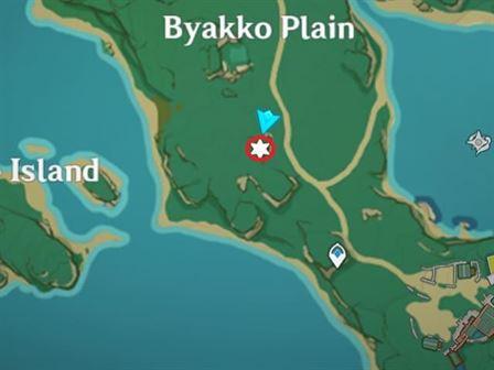 7 Равнина Electroculus Byakko над огромной каменной картой