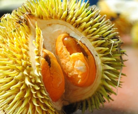 Резултат с изображение за дуриан плод