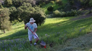 Ojai Trees co-founder Garrett Clifford was on hand Saturday to help with the tree planting at the Upper Campus -- Photo by Tracy Wilson