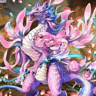 オセロニア [桃源の花竜]ラナキュラス