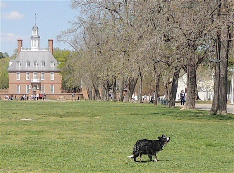 Photopost: Colonial Virginia (2/6)