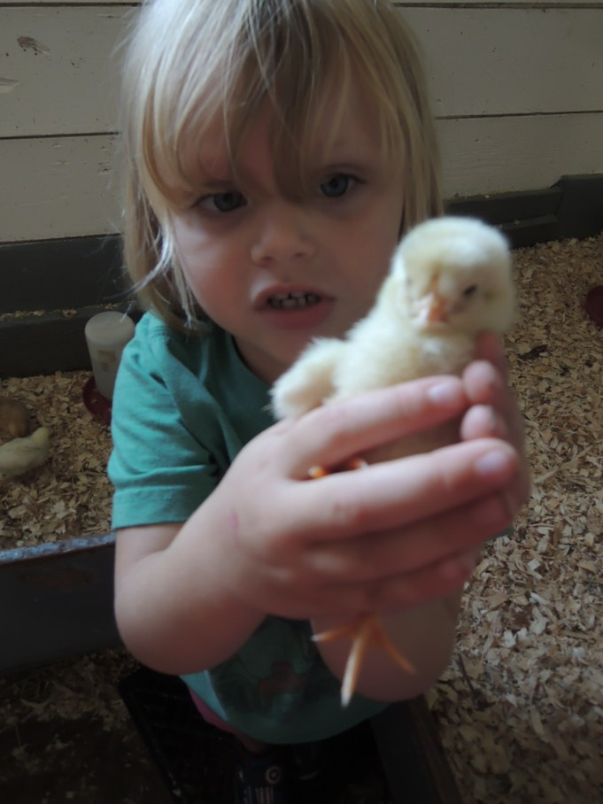 My baby with a baby chick.