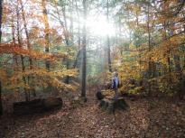 North River Wildlife Sanctuary (12)