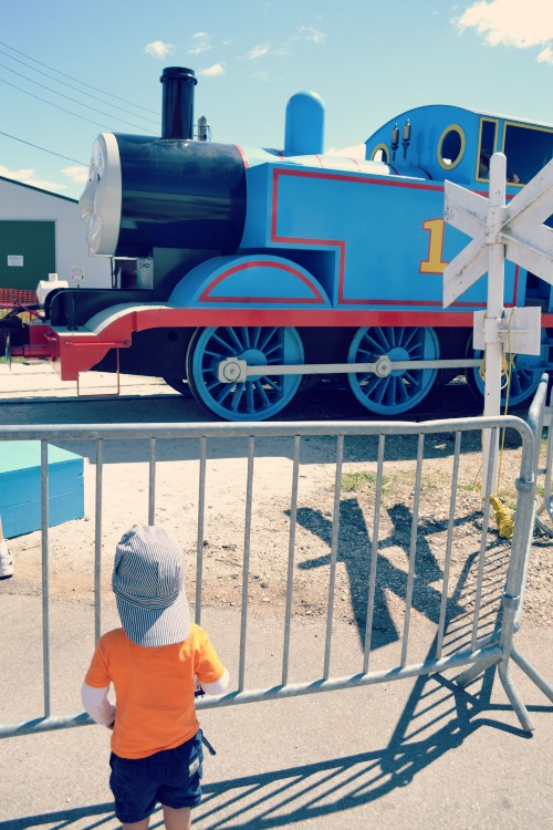 Tips to enjoy Day Out With Thomas at the Illinois Railway Museum.