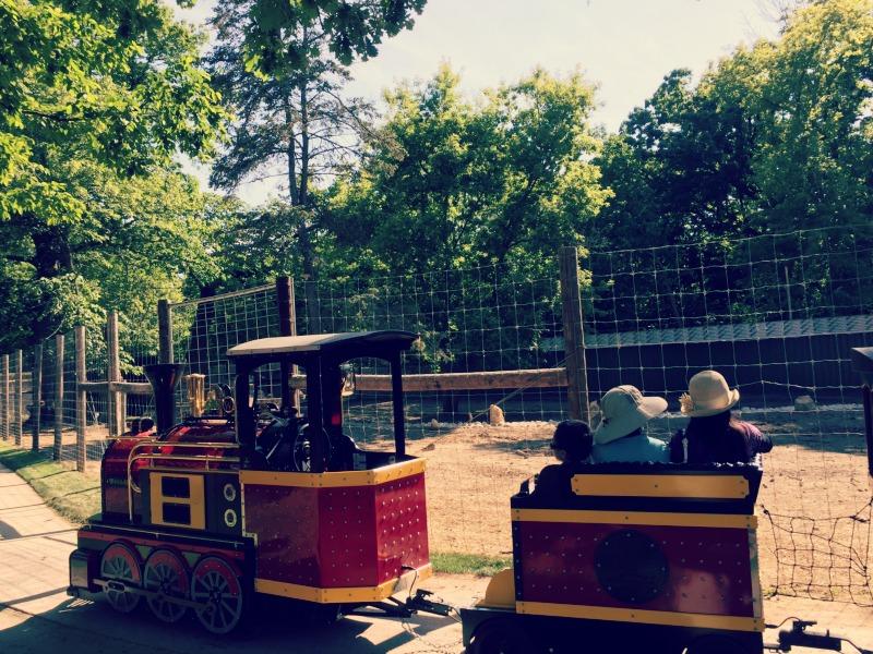 Santas Village AZoosment Park Train