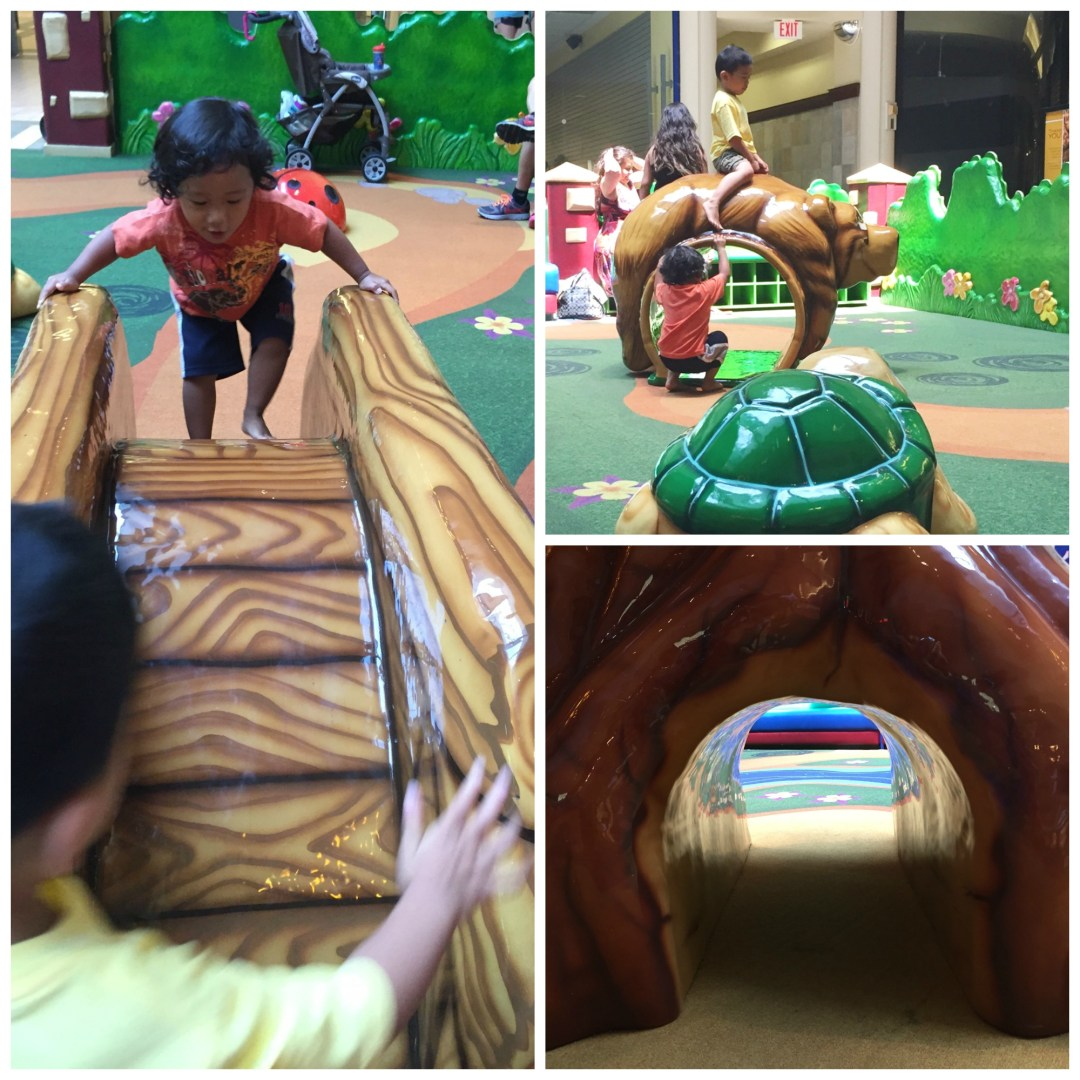 Spring Hill Mall West Dundee Play Crawl Climb Collage