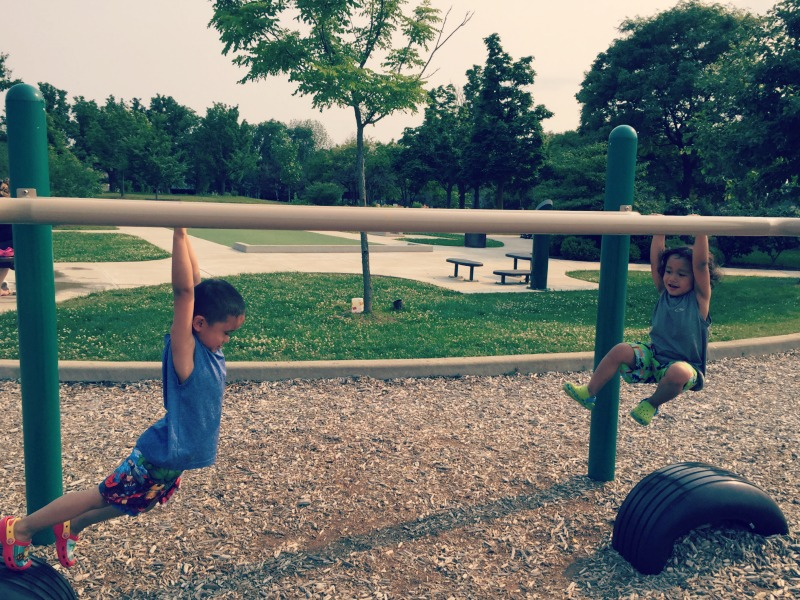 Fountain Square Park Elk Grove Village Playground Monkey Bars Young