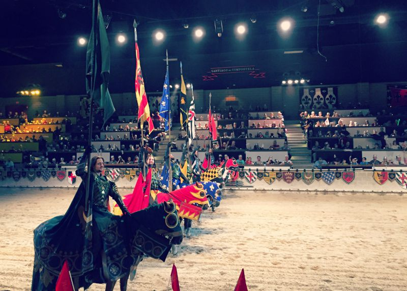 Medieval Times Chicago Schaumburg Pageantry and Gallantry