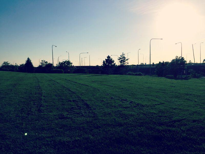 Schaumburg Boomers Grassy Area