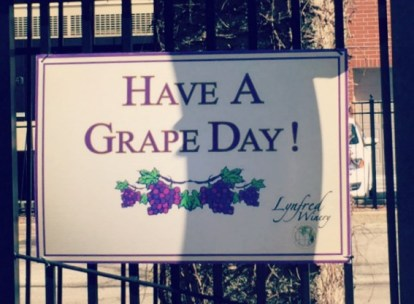 Lynfred-Winery-Have a Grape Day