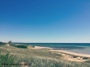 Family Friendly Ludington - View from Dunes