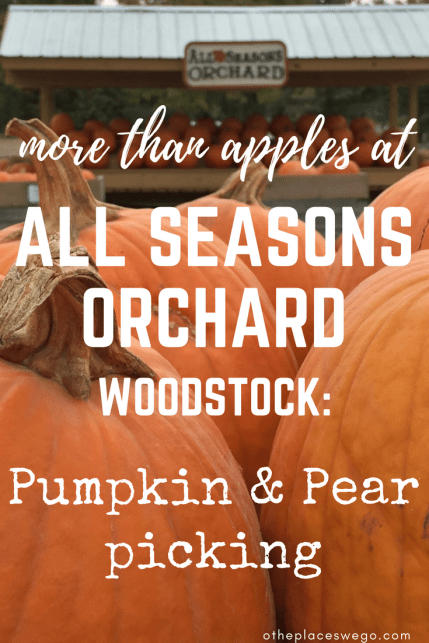 Pin this: Family fun at All Seasons Orchard includes more than apples. They have pumpkin and pear picking too, along with fun activities and delicious treats.