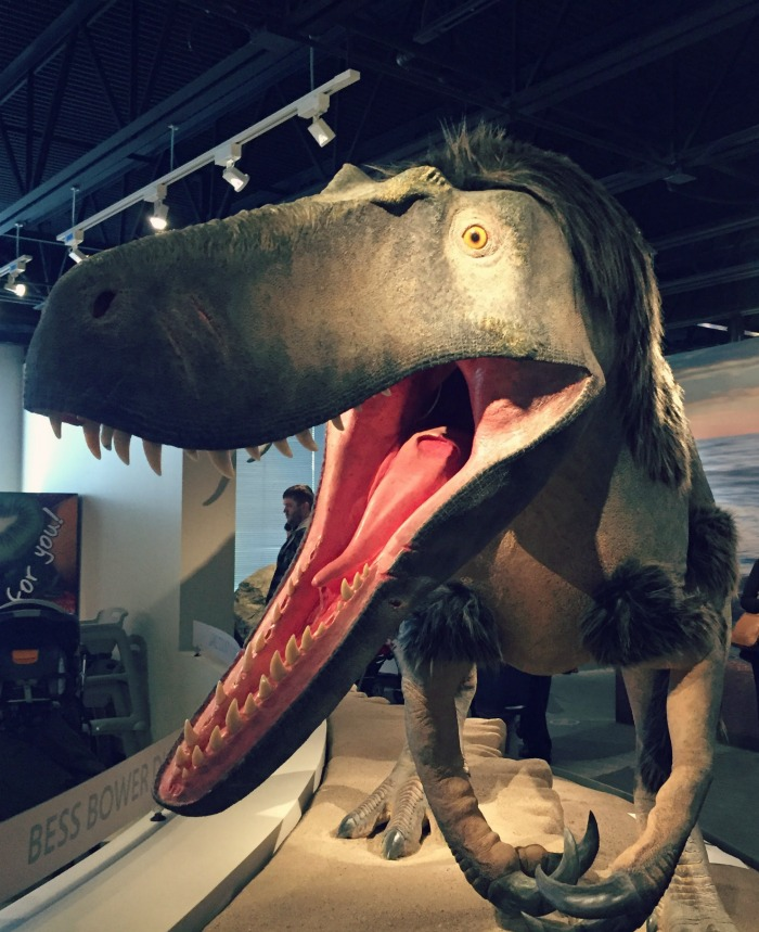 Bess Bower Dunn Museum: Explore Lake County's History....and Dinosaur!